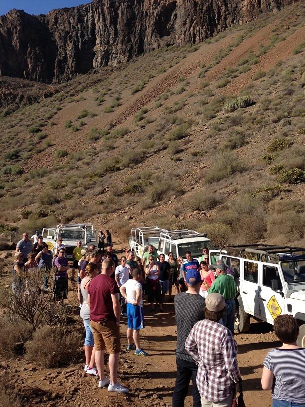 Jeep safari small